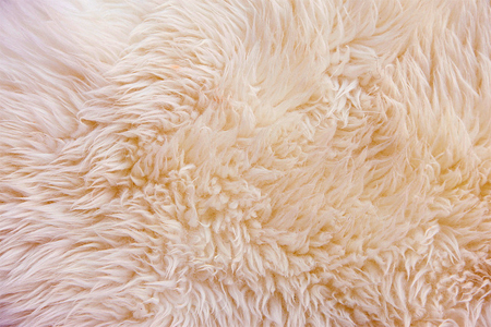 How to Get Smell Out of Sheepskin
