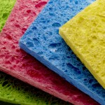How to Get Smell Out of Sponge